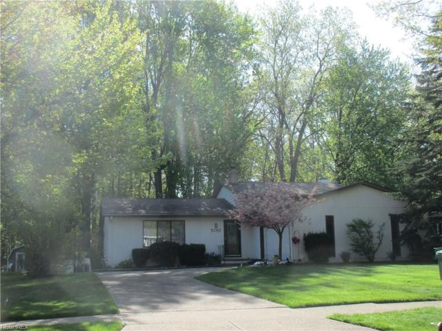 5787 Grovewood Dr, Mentor, OH 44060 (MLS #3999692) :: The Trivisonno Real Estate Team