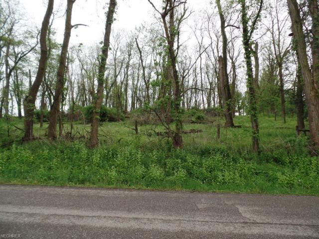 Township Road 267, Amsterdam, OH 43903 (MLS #3999700) :: The Crockett Team, Howard Hanna