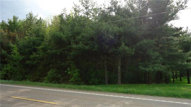 Union Ave NE, Homeworth, OH 44634 (MLS #3999830) :: PERNUS & DRENIK Team