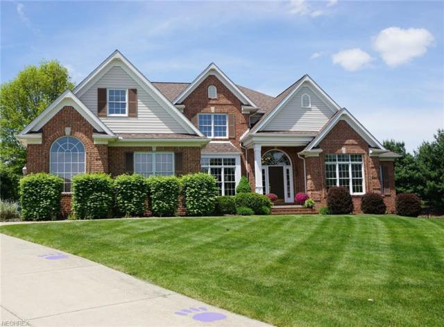 6088 Kinloch Court Cir NW, Massillon, OH 44646 (MLS #4000073) :: RE/MAX Trends Realty