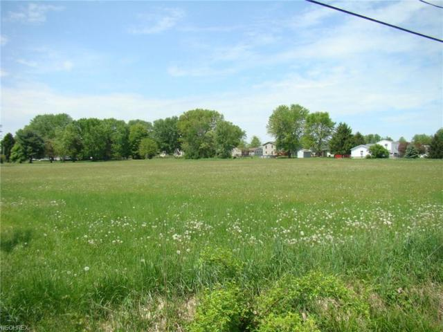 Lot 58E State Route 303, Windham, OH 44288 (MLS #4000399) :: The Trivisonno Real Estate Team