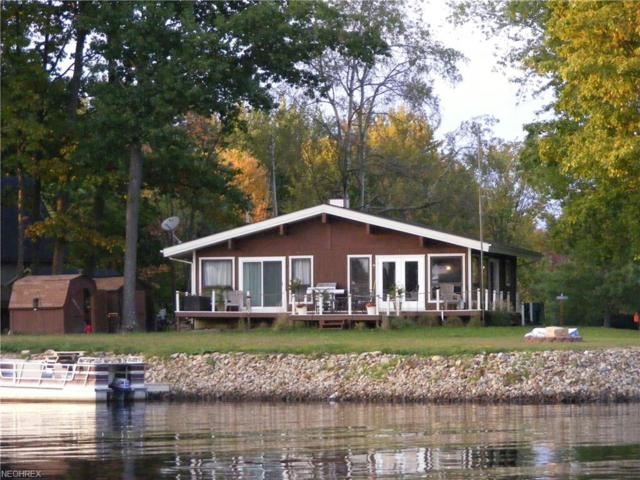 2570 Dam Vue Dr, Roaming Shores, OH 44084 (MLS #4000699) :: The Trivisonno Real Estate Team