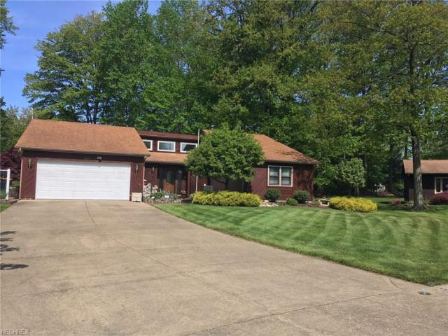 9187 Thomas Ct, Mentor, OH 44060 (MLS #4000756) :: The Trivisonno Real Estate Team