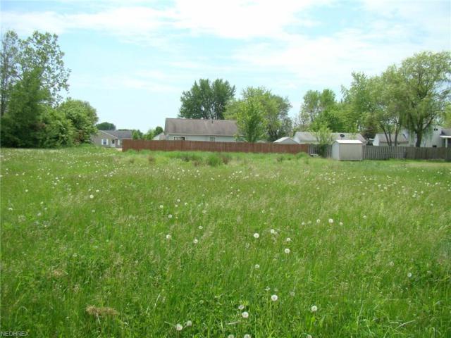 Belden, Windham, OH 44288 (MLS #4000779) :: The Trivisonno Real Estate Team