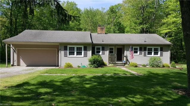 8651 Munson Hill Rd, Ashtabula, OH 44004 (MLS #4000879) :: The Crockett Team, Howard Hanna