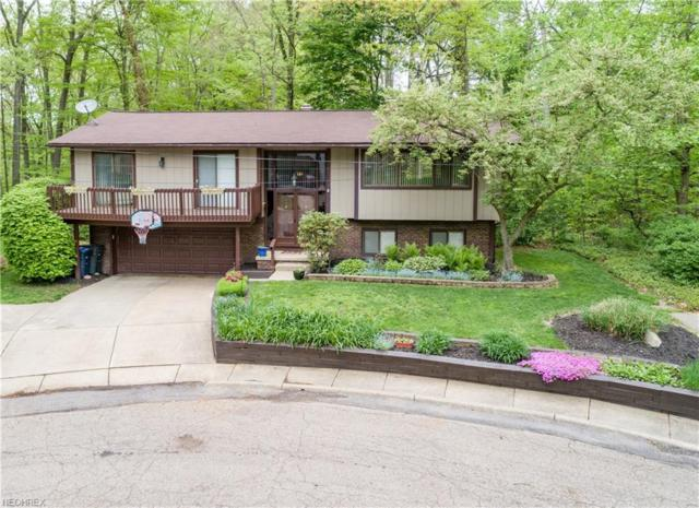 785 Marmont Dr, Akron, OH 44313 (MLS #4000880) :: The Trivisonno Real Estate Team