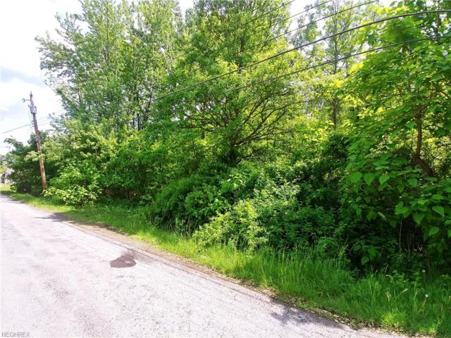 V/L Union St, Norton, OH 44203 (MLS #4000964) :: RE/MAX Valley Real Estate