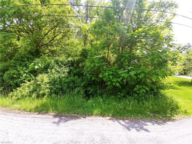 V/L Union St, Norton, OH 44203 (MLS #4000972) :: RE/MAX Valley Real Estate