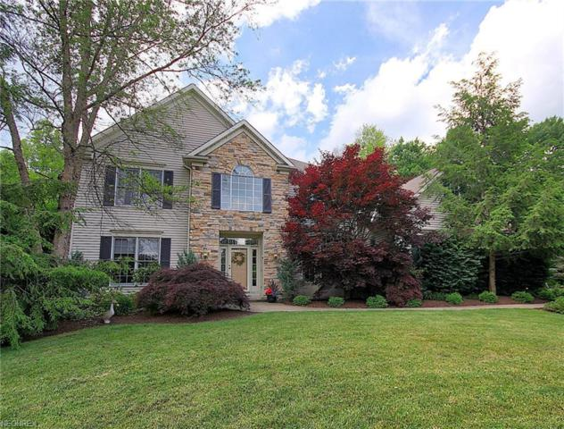 17260 Buckthorn Dr, Chagrin Falls, OH 44023 (MLS #4001097) :: Tammy Grogan and Associates at Cutler Real Estate