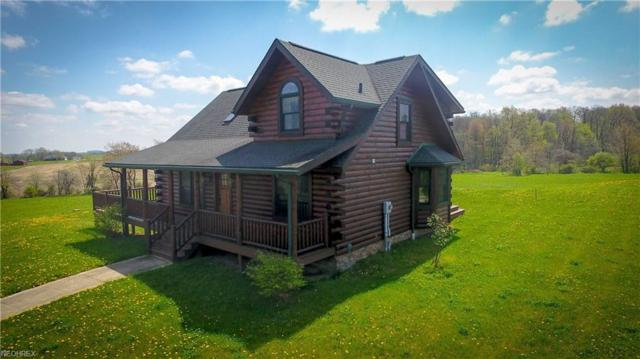 7536 Hoy Rd, Wooster, OH 44691 (MLS #4001275) :: Tammy Grogan and Associates at Cutler Real Estate