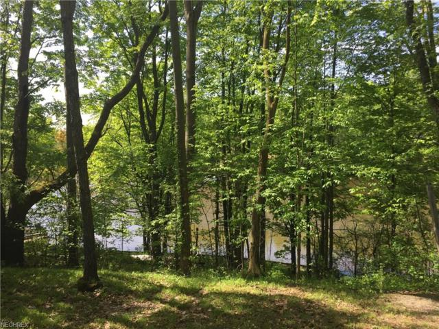 1825 Callender Rd, Roaming Shores, OH 44084 (MLS #4001389) :: Tammy Grogan and Associates at Cutler Real Estate
