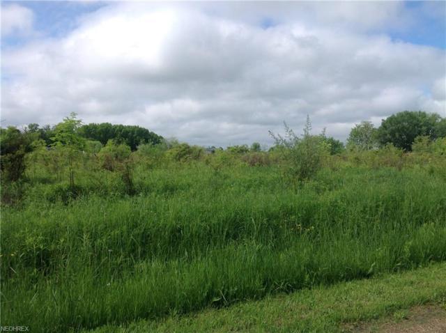 Best Rd, North Benton, OH 44449 (MLS #4001562) :: The Crockett Team, Howard Hanna