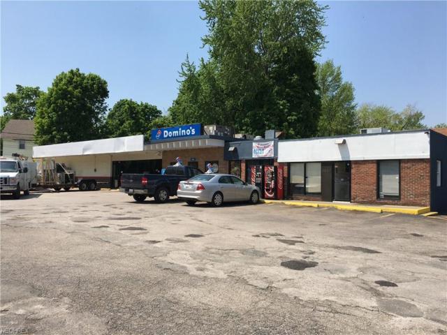 5817 Main Ave, Ashtabula, OH 44004 (MLS #4001879) :: Tammy Grogan and Associates at Cutler Real Estate