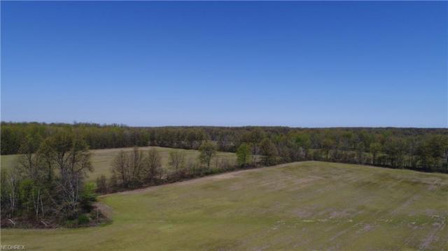 10240 Island Rd, Grafton, OH 44044 (MLS #4001882) :: RE/MAX Edge Realty