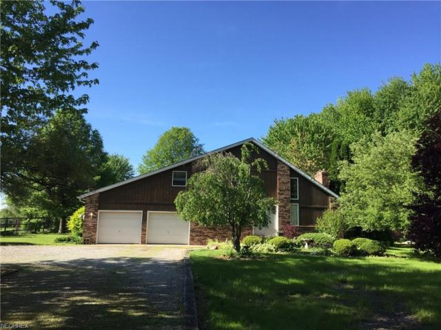 27010 Osborne Rd, Columbia Station, OH 44028 (MLS #4002077) :: PERNUS & DRENIK Team