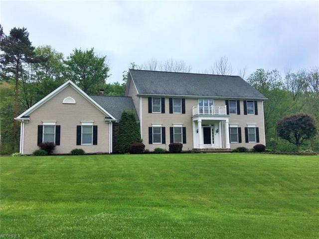 10826 Lakebrook Dr, Kirtland, OH 44094 (MLS #4002132) :: Tammy Grogan and Associates at Cutler Real Estate