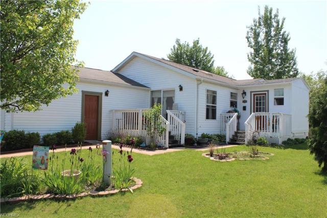 9065 Sandpiper, Streetsboro, OH 44241 (MLS #4002296) :: Tammy Grogan and Associates at Cutler Real Estate