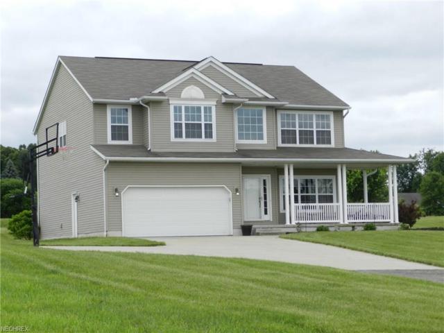 3200 Bartlett Rd, Mantua, OH 44255 (MLS #4002319) :: PERNUS & DRENIK Team