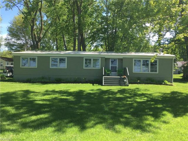 203 Kaempfe, Kelleys Island, OH 43438 (MLS #4002464) :: The Crockett Team, Howard Hanna