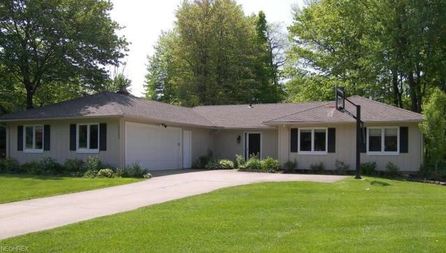 33500 N Burr Oak Dr, Solon, OH 44139 (MLS #4002563) :: Tammy Grogan and Associates at Cutler Real Estate