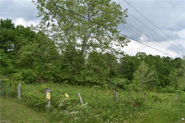 0 St Rt 78, Woodsfield, OH 43793 (MLS #4002601) :: RE/MAX Valley Real Estate