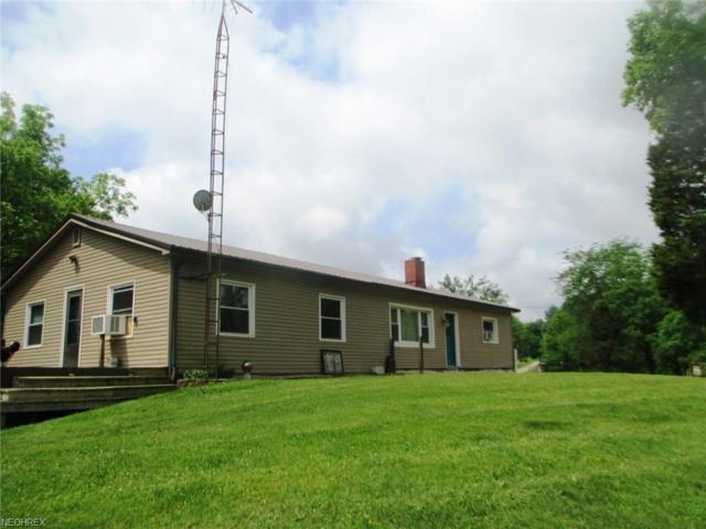 4100 Coon Ridge Rd, Chandlersville, OH 43727 (MLS #4002826) :: PERNUS & DRENIK Team