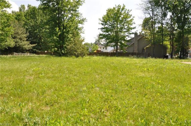 334 Deer Creek Trl, Cortland, OH 44410 (MLS #4003214) :: RE/MAX Edge Realty