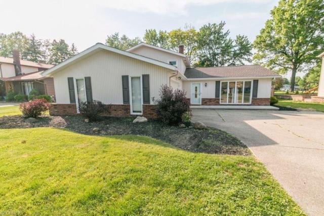 3849 Skyview Dr, Brunswick, OH 44212 (MLS #4003489) :: Tammy Grogan and Associates at Cutler Real Estate