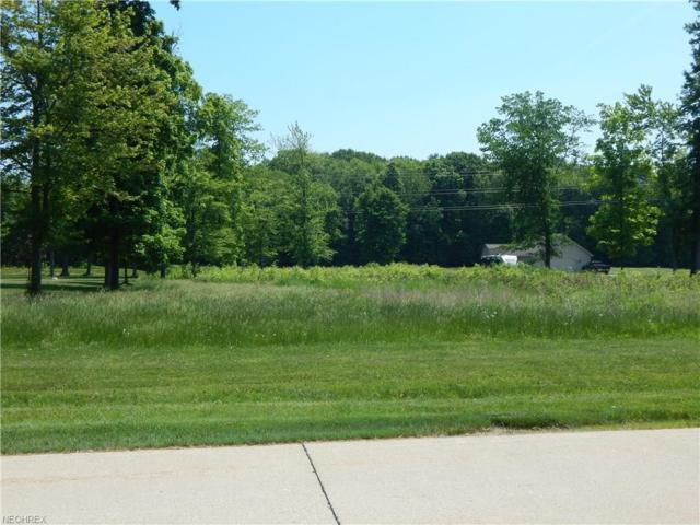 Heritage Way, Amherst, OH 44001 (MLS #4003613) :: Tammy Grogan and Associates at Cutler Real Estate