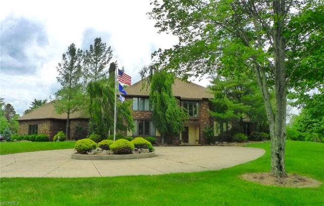 10 Woodburn Dr, Moreland Hills, OH 44022 (MLS #4003641) :: The Crockett Team, Howard Hanna