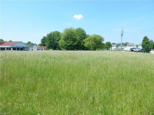 Leavitt Rd, Amherst, OH 44001 (MLS #4003657) :: The Crockett Team, Howard Hanna