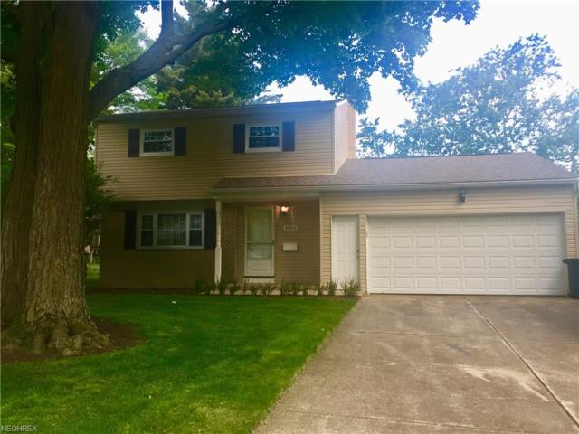 4892 Delevan Dr, Lyndhurst, OH 44124 (MLS #4003847) :: RE/MAX Trends Realty