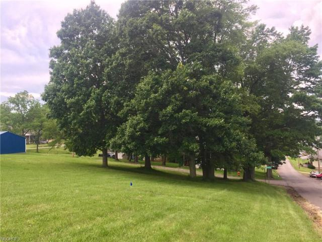 Mckinley Lot A Ave, Bethesda, OH 43719 (MLS #4003889) :: RE/MAX Edge Realty