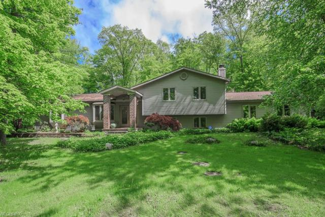 9544 Crackel Rd, Aurora, OH 44202 (MLS #4004116) :: Tammy Grogan and Associates at Cutler Real Estate