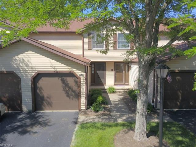 9666 E Idlewood Dr #6, Twinsburg, OH 44087 (MLS #4004258) :: RE/MAX Trends Realty