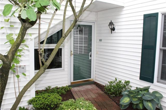 6111 Center St #103, Mentor, OH 44060 (MLS #4004465) :: RE/MAX Trends Realty