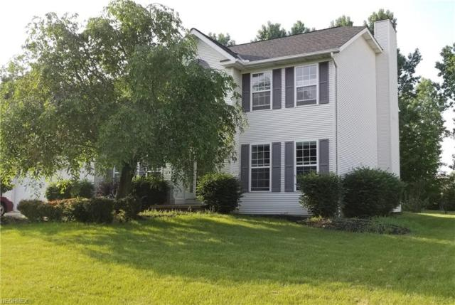 301 Southampton, Medina, OH 44256 (MLS #4004587) :: Tammy Grogan and Associates at Cutler Real Estate