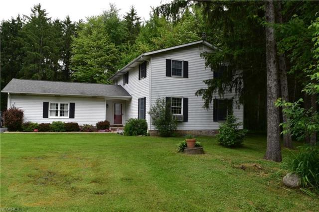 10662 Wilson Mills Rd, Chardon, OH 44024 (MLS #4004765) :: Tammy Grogan and Associates at Cutler Real Estate