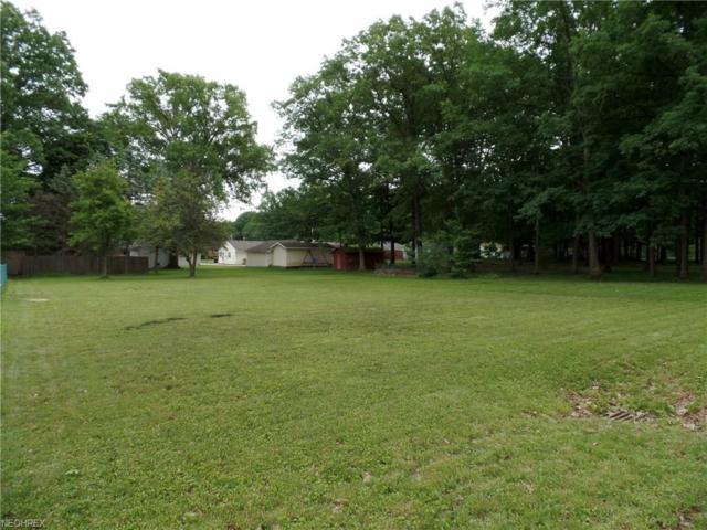 Parkview Ave, McDonald, OH 44437 (MLS #4004833) :: The Crockett Team, Howard Hanna