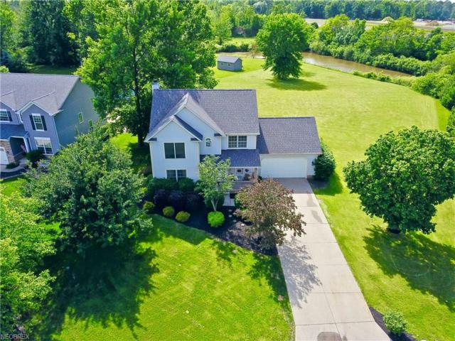 4110 Scotch Pine Ct, Perry, OH 44081 (MLS #4004911) :: The Crockett Team, Howard Hanna