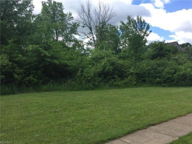 Lot 28 Terra Verde Ave, Columbiana, OH 44408 (MLS #4005057) :: PERNUS & DRENIK Team