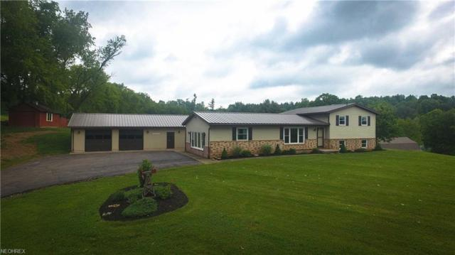 10801 County Road 320, Millersburg, OH 44654 (MLS #4005075) :: Tammy Grogan and Associates at Cutler Real Estate