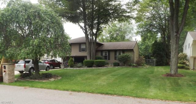 337 Wheelock NE, Howland, OH 44484 (MLS #4005241) :: RE/MAX Trends Realty