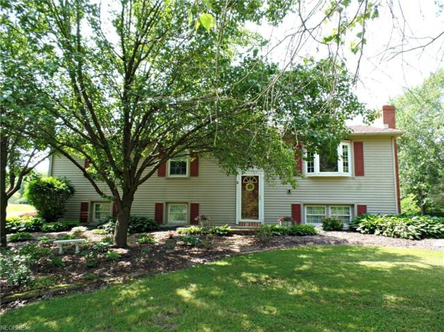 16383 Mock Rd, Berlin Center, OH 44401 (MLS #4005416) :: RE/MAX Trends Realty