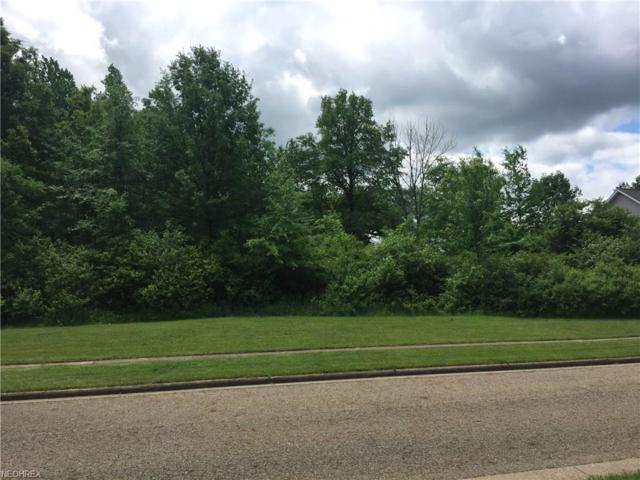 Lot 32 Terra Verde Ave, Columbiana, OH 44408 (MLS #4005471) :: RE/MAX Valley Real Estate