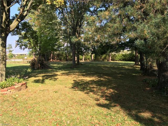 1419 S Carpenter Road, Brunswick, OH 44212 (MLS #4005486) :: The Holly Ritchie Team