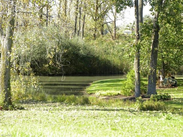 985 Lost Lake Rd, Port Clinton, OH 43452 (MLS #4005680) :: PERNUS & DRENIK Team