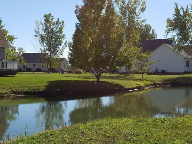 1198 Catawba Bay Dr, Port Clinton, OH 43452 (MLS #4005685) :: PERNUS & DRENIK Team