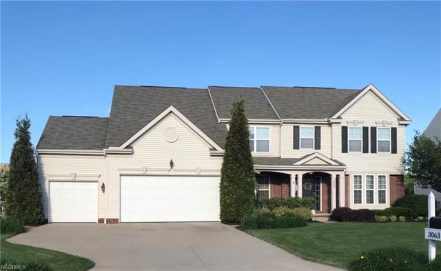 3063 Dunstone Ave, Akron, OH 44312 (MLS #4006013) :: The Crockett Team, Howard Hanna