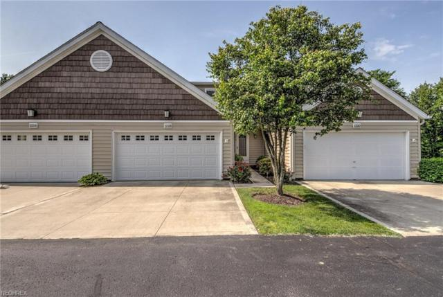 1218 Canyon View Rd, Sagamore Hills, OH 44067 (MLS #4006086) :: RE/MAX Trends Realty